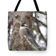 Get My Good Side-grey Jay Tote Bag