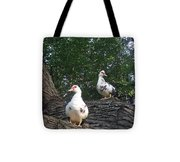Getting A Better View Tote Bag
