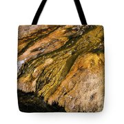 Geyser Basin Springs Tote Bag