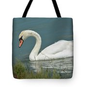 Ghost In The Lagoon Tote Bag