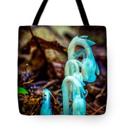 Ghost Plant Tote Bag