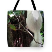 Ghost Squirrel Tote Bag