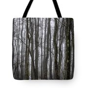 Ghost Swamp Tote Bag