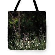 Ghost Wolf Tote Bag by DigiArt Diaries by Vicky B Fuller