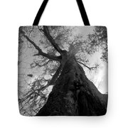 Ghostly Tree Tote Bag
