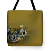 Giant Amazonian River Turtle Tote Bag