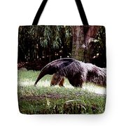 Giant Anteater Tote Bag