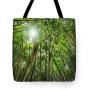 Giant Bamboo In Forest With Sunflare Tote Bag