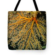 Giant Coral Polyp Tote Bag
