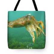 Giant Cuttlefish Tote Bag