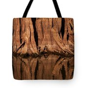 Giant Cypress Tree Trunk And Reflection Tote Bag