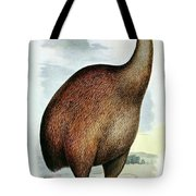 Giant Moa Dinornis Ingens, Cenozoic Bird Tote Bag