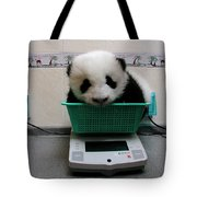 Giant Panda Ailuropoda Melanoleuca Baby Tote Bag