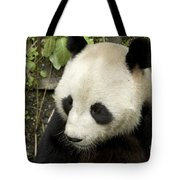 Giant Panda At Rest Tote Bag