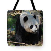 Giant Panda Bear Creeping Under A Tree Branch Tote Bag