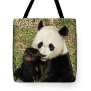 Giant Panda Bear Holding On To Bamboo While Eating Tote Bag