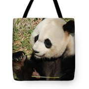 Giant Panda Feeding Himself Shoots Of Bamboo  Tote Bag