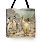 Giant Penguins, C1900 Tote Bag