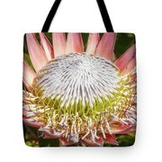 Giant Pink King Protea Flower Tote Bag