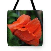 Giant Poppy-2 Tote Bag