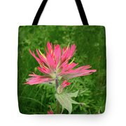 Giant Red Paintbrush Tote Bag