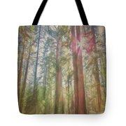 Giant Sequoias Tote Bag