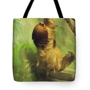Giant Sloth     June          Indiana Tote Bag