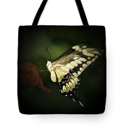 Giant Swallowtail 2 Tote Bag