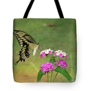 Giant Swallowtail Butterfly II Tote Bag