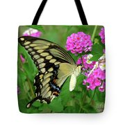 Giant Swallowtail Butterfly  IIi Tote Bag