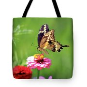 Giant Swallowtail Butterfly On Pink Zinnia Tote Bag