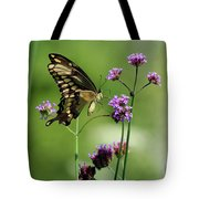 Giant Swallowtail Butterfly On Verbena Tote Bag