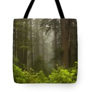 Giants In The Mist Tote Bag by Mike  Dawson