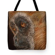 Gibbon Tote Bag by Karen Ilari