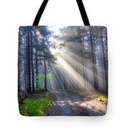 Gift Of Light Tote Bag