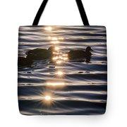 Gifts Of Sunshine Tote Bag