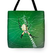 Gilded Silver-face Tote Bag