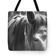Gillagan The Horse In Glacier National Park   Tote Bag