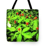 Ginger Flowers Tote Bag