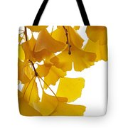 Ginkgo Ginkgo Biloba Leaves In Autumn Tote Bag