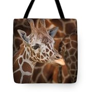 Giraffe - Camouflage Tote Bag