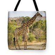 Giraffe Grazing Tote Bag