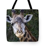 Giraffe Looking At You Tote Bag