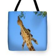 Giraffe Lunch Tote Bag