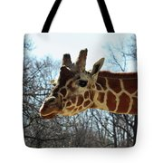 Giraffe Stretching For A View Tote Bag
