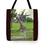 Giraffe With African Baobob Tree Tote Bag