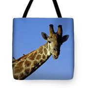 Giraffe With Oxpeckers Tote Bag