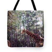 Giraffesgalore Tote Bag