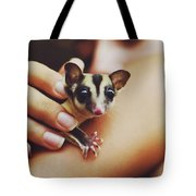 Girl Holding A Cute, Adorable And Curious Baby Sugar Glider Pet On Her Arm Tote Bag