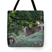 Girls On A Hill Tote Bag